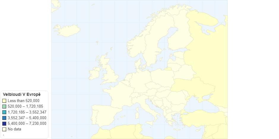 Velbloudi V Evropě